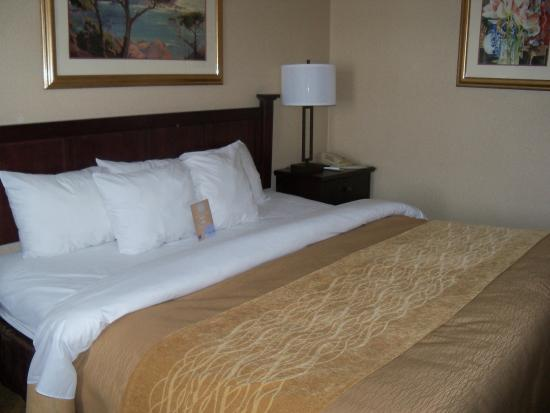 Denver, Pensilvania: The king size bed