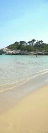 Cassibile, Италия: Spiaggia Pineta del Gelsomineto
