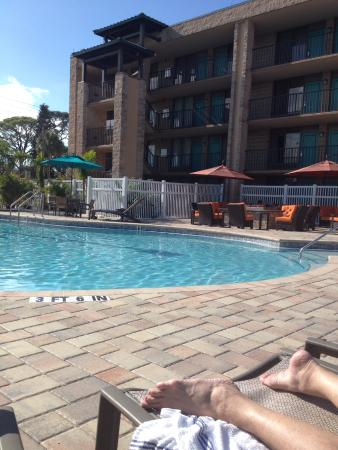 BEST WESTERN PLUS Siesta Key Gateway: Relaxing by the pool