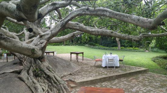 White River, Sudáfrica: outdoor breakfast on the patio