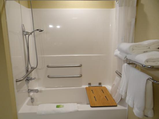 Delmar, MD: Accessible Bathtub with Extra Grab Bars for assistance