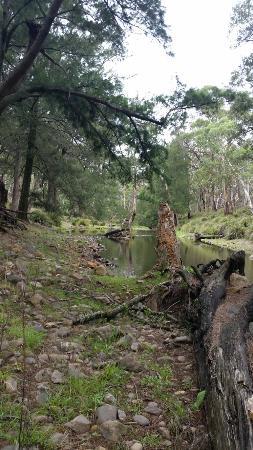 Capertee, Austrália: 20160106_120034_large.jpg