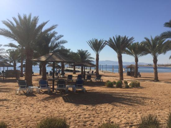 wholesale sales new photos special section Movenpick Tala Bay, Aqaba, Jordan - Picture of Movenpick ...