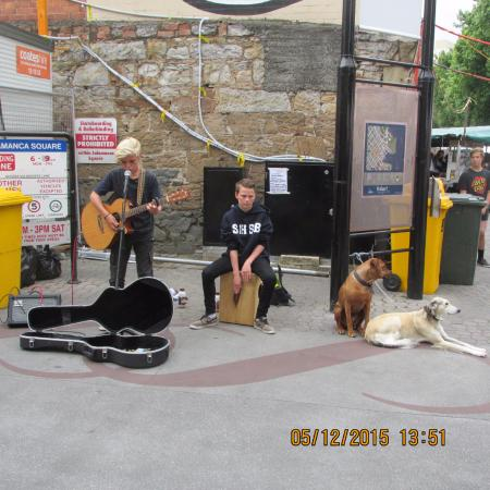 Salamanca Market: These guys sounded great!