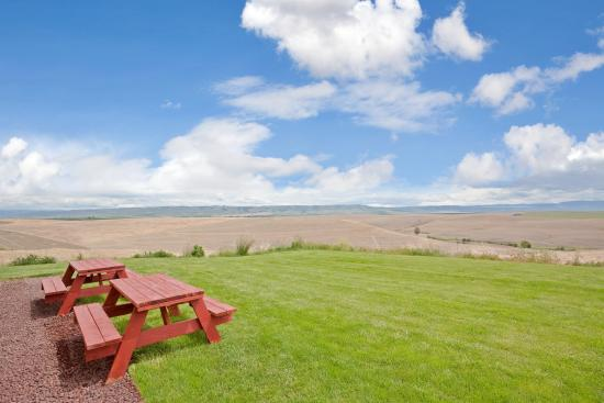 Pendleton, OR: Beautiful Green Grounds with view of Blue Mountains