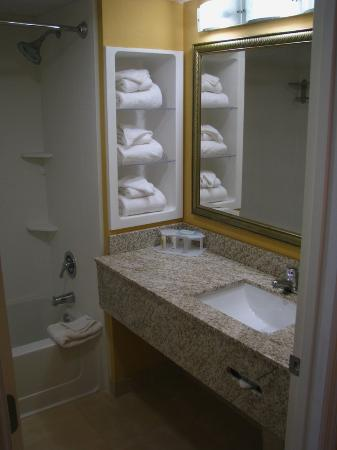 Holiday Inn Express and Suites Oceanfront: Guest Bathroom