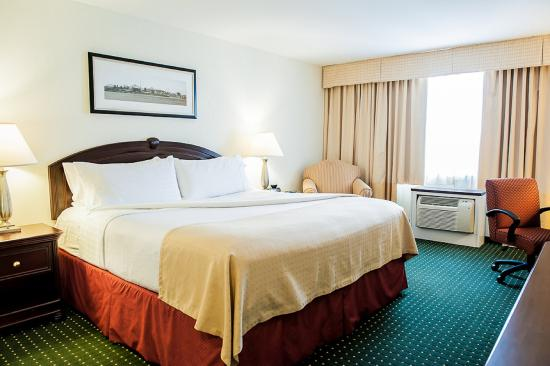 Longueuil, Canada: King Bed Guest Room