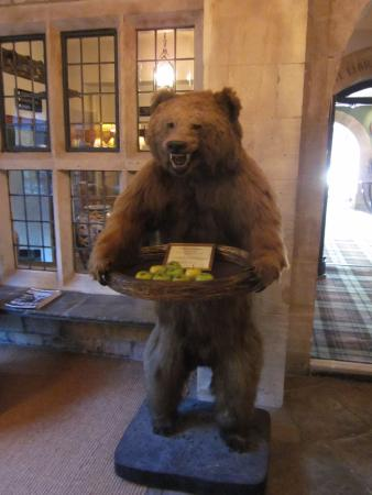 Stroud, UK: Reception bear!