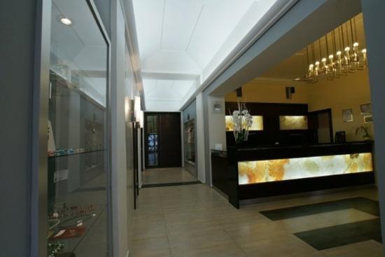 Hotel Lunik: Reception
