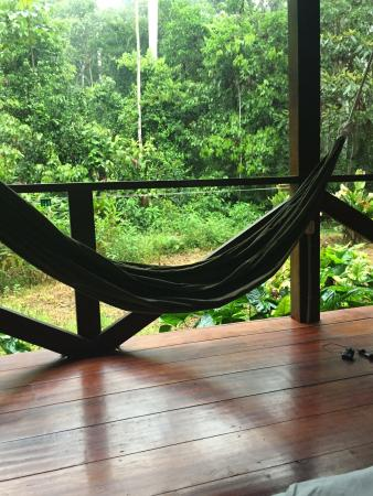 Hammock on the balcony picture of refugio amazonas for Balcony hammock