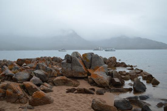 Freycinet, Australie : In the early morning.