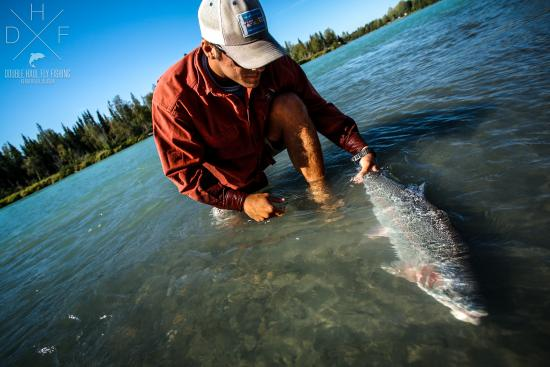 Sterling, AK: Giant fly caught rainbow trout of the Kenai
