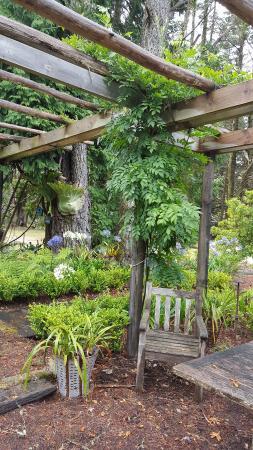 Blackheath, Australia: Garden