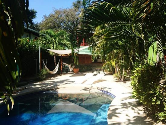 Playa Grande, คอสตาริกา: Swimminf pool