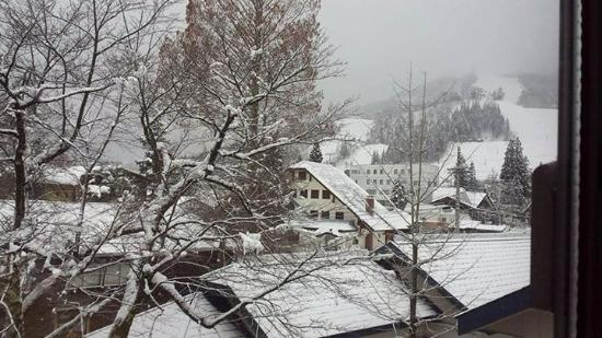 Hakuba Springs Hotel: Snowing!