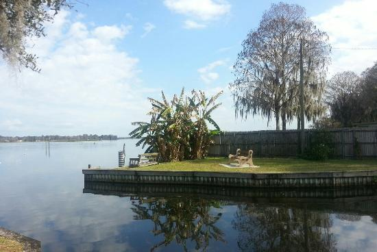 Lake rousseau rv fishing resort picture of lake for Crystal river fl fishing report