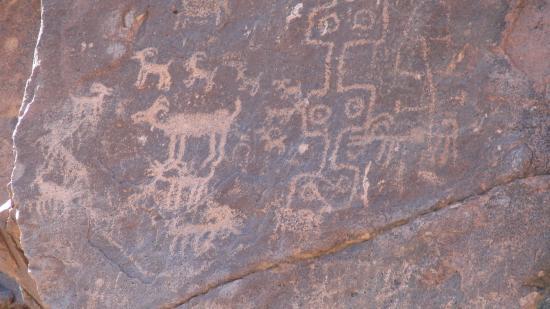 Gold Canyon, AZ: Petroglyphs