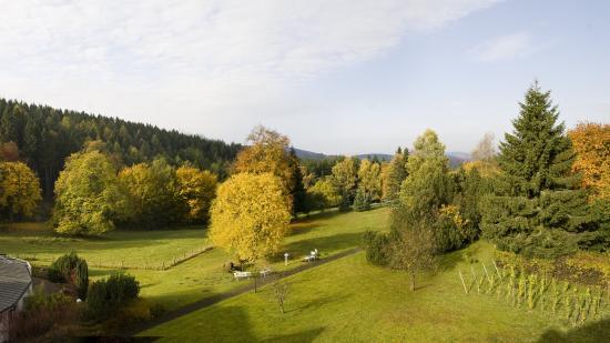 Jagdhaus, Deutschland: View into the hotel park