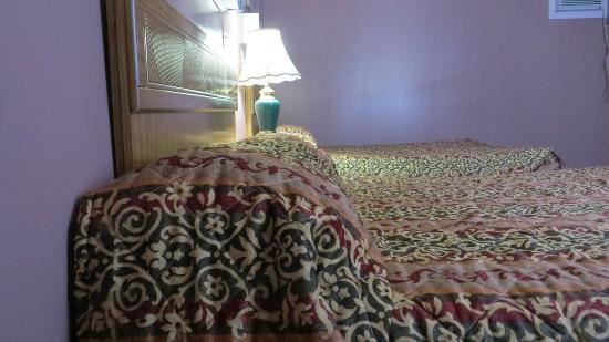 Orillia, Canadá: 2 Queen Beds - Smoking