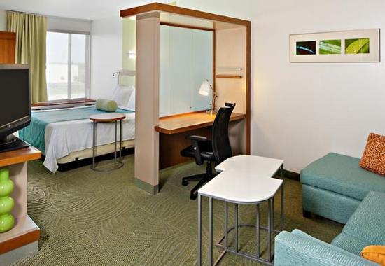 Saginaw, MI: King Studio Suite Living Area