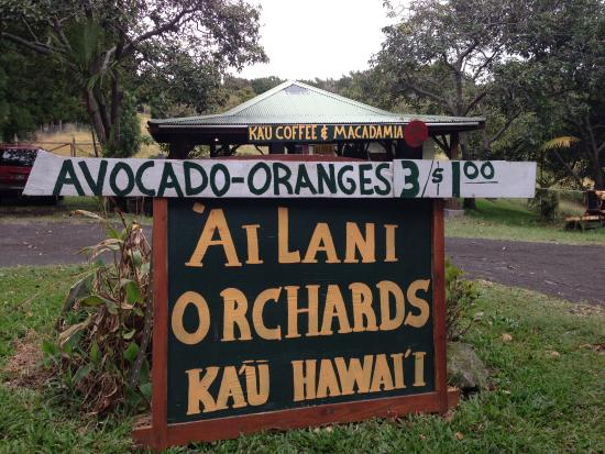 Ailani Orchards