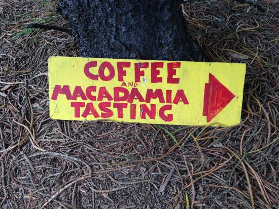 Captain Cook, HI: try both the coffee and macadamia nuts
