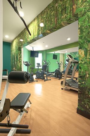 Hotel Holiday Inn Express San Jose Forum Costa Rica: Gym