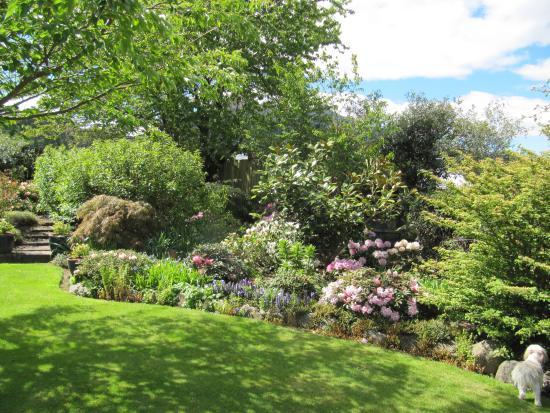 مارشمونت جاردنز: Spring Garden