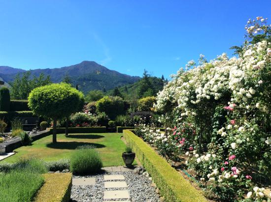 مارشمونت جاردنز: Mt Dublane