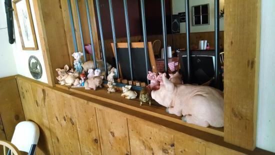 Newland, Carolina del Norte: Pig collection.