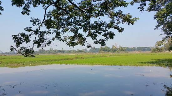Amarapura, Myanmar: 20160118_115055_large.jpg