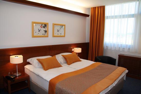 Kranj, سلوفينيا: Standard room for handicapped