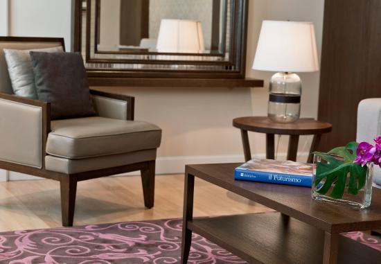 Castelvecchio Pascoli, Italie : Penthouse Suite Living Area