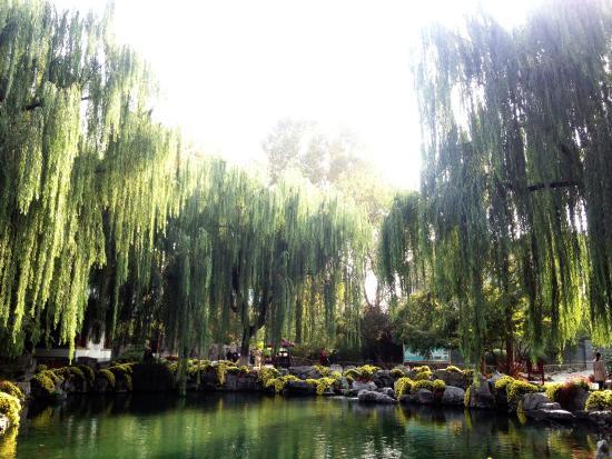 Jinan, China: Park.5