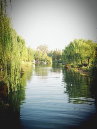 Jinan, China: Park.6