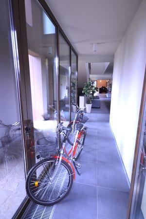 Salvaterra, Italien: Biciclette per brevi escursioni