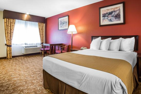 Minden, Νεβάδα: Guest Room