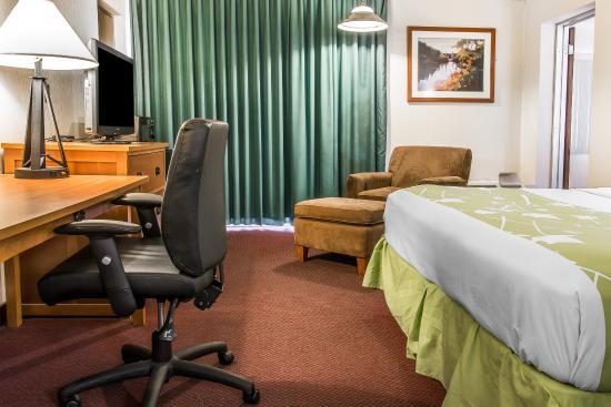 Bay City, MI: Guest Room