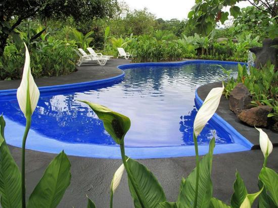 Boca Tapada, Costa Rica: Pool