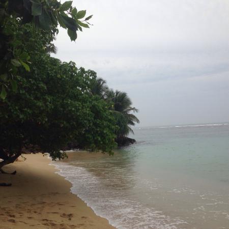 Matara, Sri Lanka: photo0.jpg