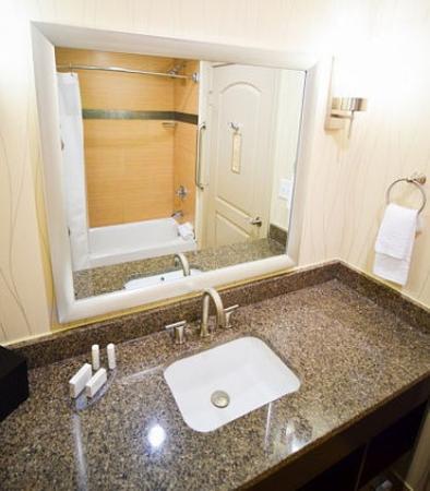 Spring, تكساس: Guest Bathroom