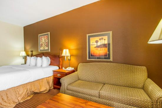 Alexander City, AL: Guest Room