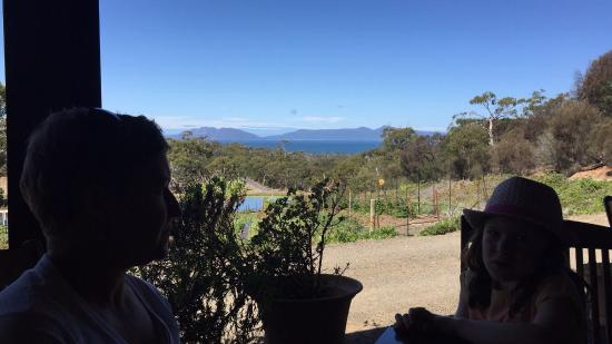 Swansea, Австралия: Magnificent view of the Tassie east coast from the outdoor dining