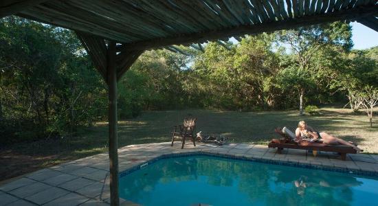 Hluhluwe, Νότια Αφρική: The Pool at Mkhulu's House