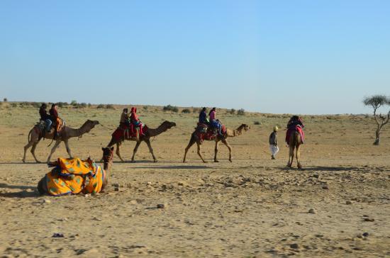 desert safari picture of india tour by car driver private day rh tripadvisor co za