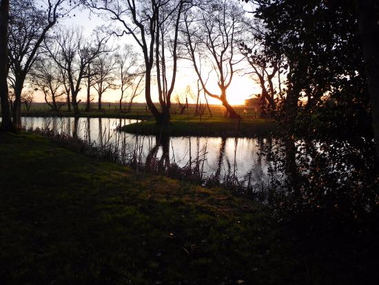 Fishing lake picture of hall farm cottages norwich for Private fishing lakes