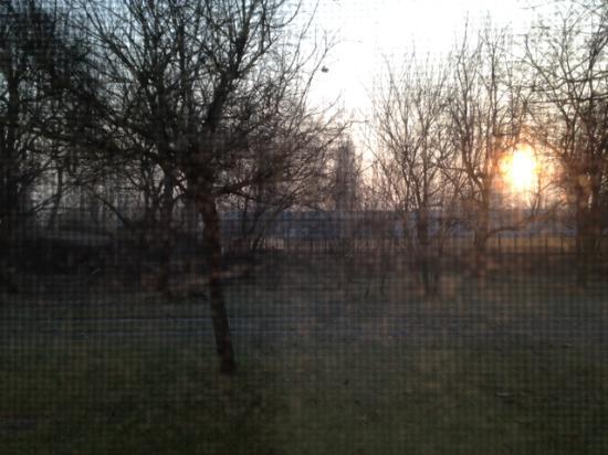 Masera di Padova, İtalya: Vista al mattino dalla camera
