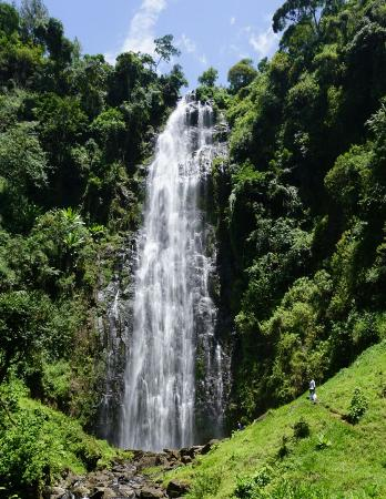 Moshi, Τανζανία: Materuni Falls
