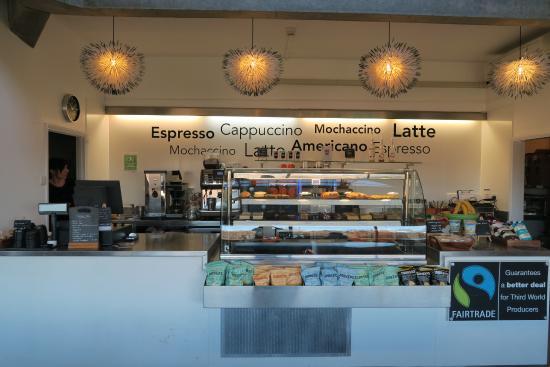 Coffee Cafe Website Design