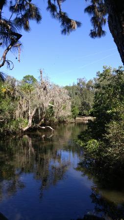 Estero, FL: Koreshan State Historic Site